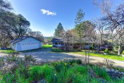Nevada County Single Family Home For Sale: 11740 Pioneer Road