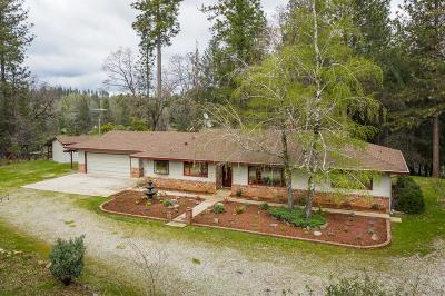 Nevada County Single Family Home For Sale: 12430 Squirrel Creek Road