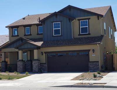 Ripon Single Family Home For Sale: 1206 Aartman Dr