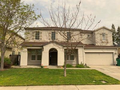 Stockton Single Family Home For Sale: 1039 Green Ridge Drive