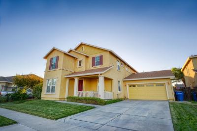 Patterson Single Family Home For Sale: 351 Wolfpack Court