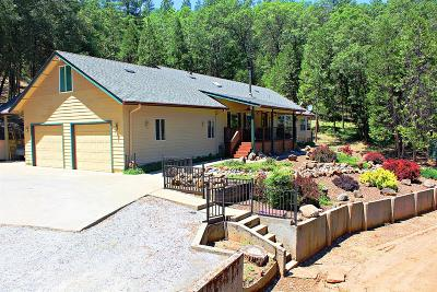 Placerville Single Family Home For Sale: 3370 Springer Road