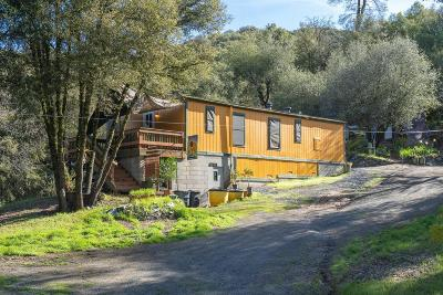 Placerville Single Family Home For Sale: 115 Bucks Bar Court