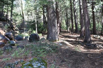 Sierra County Single Family Home For Sale: 21 Mya Way