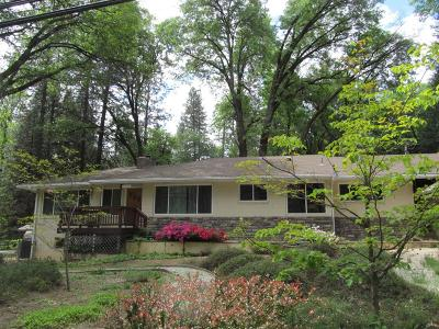 Nevada County Single Family Home For Sale: 12855 Greenhorn Road