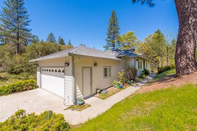 El Dorado County Single Family Home For Sale: 2612 Liberty Mine Court