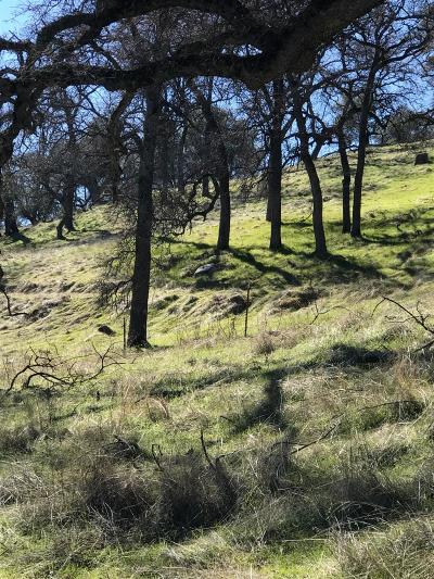 Placerville Residential Lots & Land For Sale: 6310 Windlestraw Road
