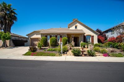 Rocklin Single Family Home For Sale: 4391 Longview Drive