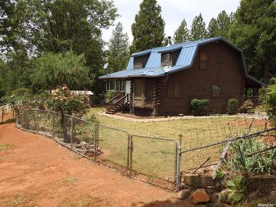 El Dorado County Single Family Home For Sale: 1395 Paymaster Mine Road