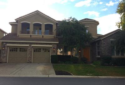 Roseville Single Family Home For Sale: 1784 Stone Canyon Drive