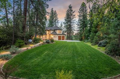Placer County Single Family Home For Sale: 955 Eden Valley Road