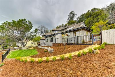 Placerville Single Family Home For Sale: 1469 Country Club Dr