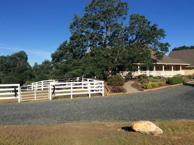 La Grange Single Family Home For Sale: 2361 Romero Street