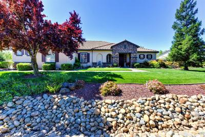Elk Grove Single Family Home For Sale: 9756 Silvergate Lane