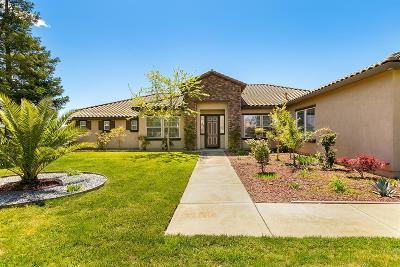 Sacramento Single Family Home For Sale: 8111 Stallion Way