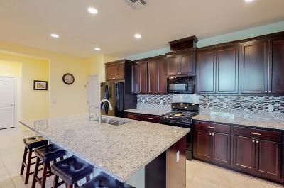 Sacramento Single Family Home For Sale: 4081 Arco Del Paso Lane