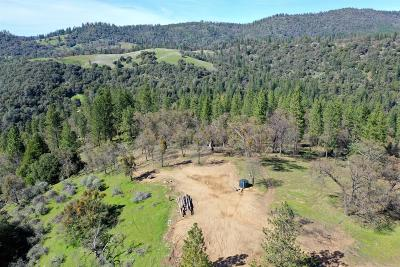 El Dorado County Single Family Home For Sale: 5795 Sweeney Road