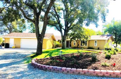 Valley Springs Single Family Home For Sale: 8229 East Ospital Road