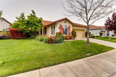Sacramento Single Family Home For Sale: 170 South Rock House Circle
