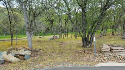 Placer County Residential Lots & Land For Sale: 6473 Eagle Court