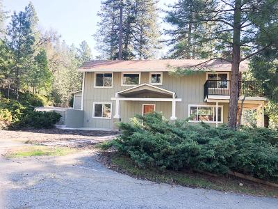 Placerville Single Family Home For Sale: 5313 Davenport Road