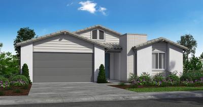 Roseville Single Family Home For Sale: 5064 Moonraker Lane