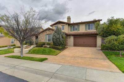 Rocklin Single Family Home For Sale: 2203 Apple Grey Lane