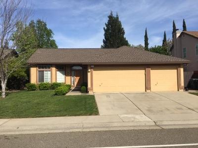 Antelope Single Family Home For Sale: 9217 Palmerson Drive