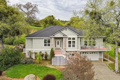 Nevada County Single Family Home For Sale: 13446 Gold Country Drive