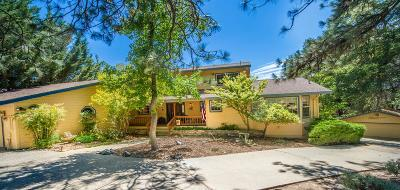 Groveland Single Family Home For Sale: 20523 Echo Ct