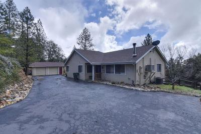 Pine Grove Single Family Home For Sale: 18630 Mountain View Drive