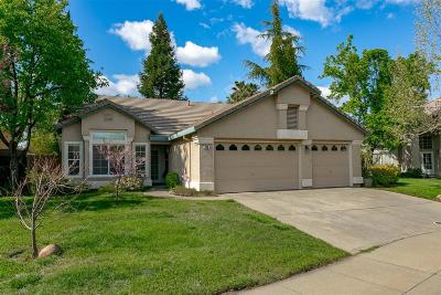 Folsom Single Family Home For Sale: 733 King Way