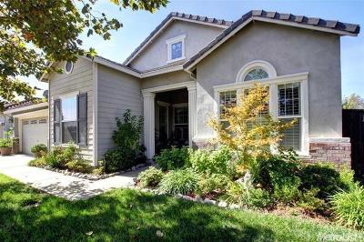 Sacramento Single Family Home For Sale: 6300 Park Village Street