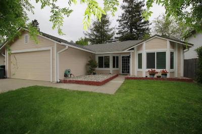 Sacramento Single Family Home For Sale: 2187 Borona Way