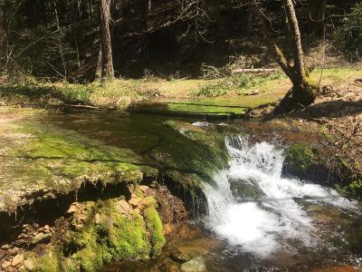 Pollock Pines Residential Lots & Land For Sale: 4952 Sierra Springs Drive