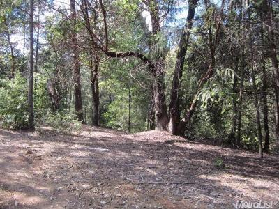 El Dorado County Residential Lots & Land For Sale: 3301 Holiday Lane