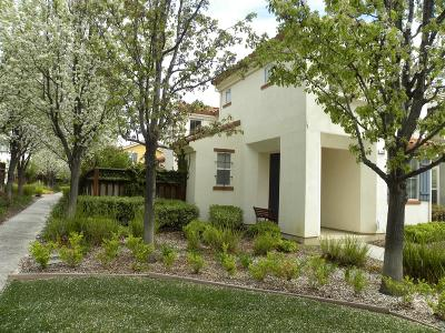 Mountain House Single Family Home For Sale: 148 West Casita Lane