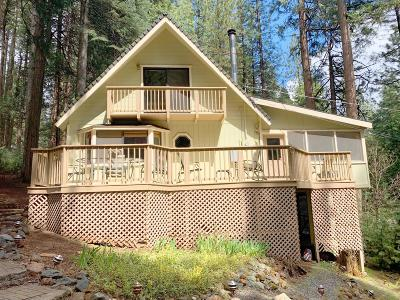 Pollock Pines Single Family Home For Sale: 6169 Kokanee Lane