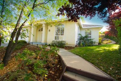 El Dorado County Single Family Home For Sale: 3437 Chasen Drive