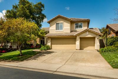 El Dorado Hills Single Family Home For Sale: 3927 Moraga Drive