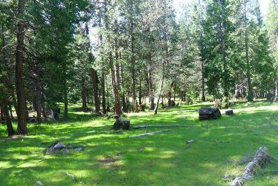 Pioneer Residential Lots & Land For Sale: 26210 Sugar Pine Drive