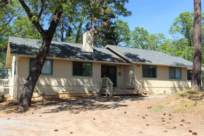 Somerset Single Family Home For Sale: 2311 Magic Mine Road