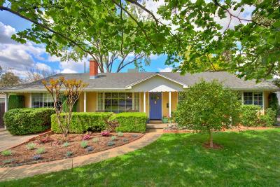 Sacramento Single Family Home For Sale: 1311 Castec Drive