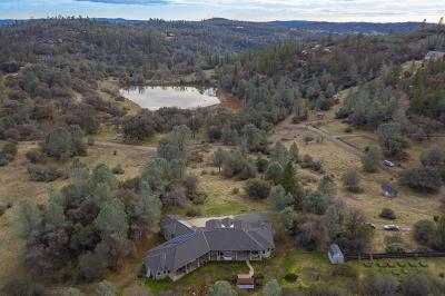 Nevada County Single Family Home For Sale: 12250 Hallwood Place