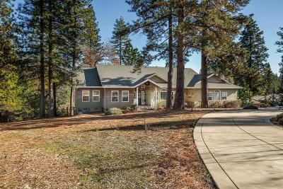 Pine Grove Single Family Home For Sale: 13590 Elderberry Court