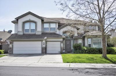 Elk Grove Single Family Home For Sale: 2820 West Pintail Way
