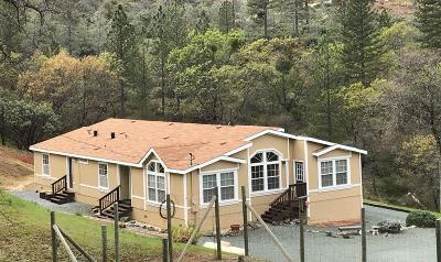 Nevada County Single Family Home For Sale: 14236 Patterson Valley Road