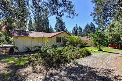 Pollock Pines Single Family Home For Sale: 5310 Gilmore Road