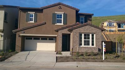 Hayward Single Family Home For Sale: 28732 Vista Grande Drive