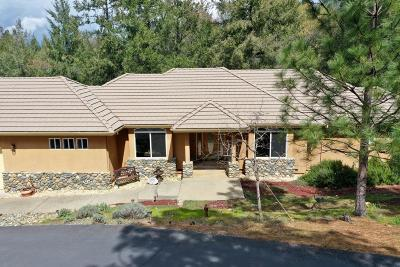 Placerville Single Family Home For Sale: 3205 Wasatch Road